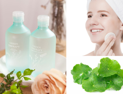 Vietnamese Youth are seeking for an Asiatic Pennywort cleansing water for acne and oily skin